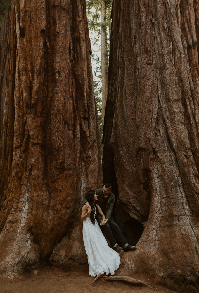 Sequoia National Park engagement photos